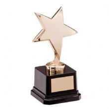 Challenger Gold Star Award